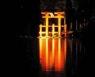 Japan: Torii at night